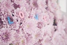 Декоративные письма формируя ` слов только вы ` стоковые изображения rf