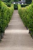Декоративные сады на замках в Франции стоковое изображение