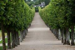 Декоративные сады на замках в Франции стоковая фотография