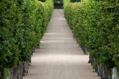 Декоративные сады стоковое изображение rf
