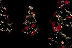 Декоративные света рождественской елки в темноте стоковое изображение