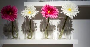 Декоративные стеклянные вазы с цветками на белой деревянной полке Стоковая Фотография RF