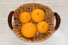 Декоративные тыквы в корзине Стоковая Фотография RF