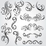 Декоративные флористические элементы Стоковые Изображения RF