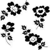 декоративные цветки Стоковые Фотографии RF
