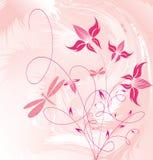декоративные цветки Стоковое Фото