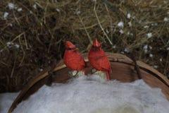 Декоративные bullfinches птиц сидя на снеге Стоковое Изображение RF
