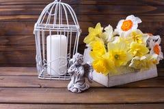Декоративный ангел, скачет белые и желтые цветки a daffodils Стоковые Изображения