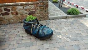 Декоративный голубой flowerbed стилизованный как старый ботинок стоковое изображение rf