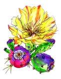 Декоративный желтый кактус в цветении Стоковые Изображения RF