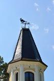 Декоративный кот лопасти погоды a и мышь на шипе башни Стоковые Фото