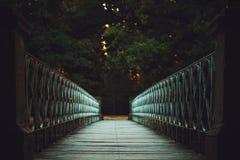 Декоративный мост над рекой Стоковые Изображения