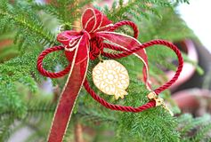 Декоративный орнамент рождества с удачливым гранатовым деревом Стоковые Изображения