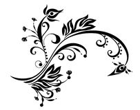 декоративный орнамент Стоковые Изображения RF
