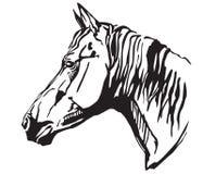 Декоративный портрет иллюстрации вектора horse-2 Стоковая Фотография RF