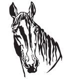 Декоративный портрет иллюстрации вектора Trakehner horse-2 Стоковые Фотографии RF