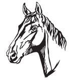 Декоративный портрет иллюстрации вектора Trakehner horse-3 Стоковые Изображения