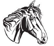 Декоративный портрет иллюстрации вектора Trakehner horse-4 Стоковые Изображения