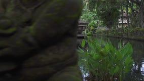 Декоративный рыбный пруд летом в саде индусских висков на зеленом тропическом ландшафте деревьев Старое традиционное акции видеоматериалы