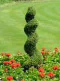 декоративный сад Стоковая Фотография