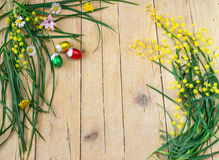Декоративный состав цветков мимозы и яичек шоколада для Стоковые Изображения