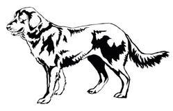 Декоративный стоящий портрет illustrati вектора чабана собаки бесплатная иллюстрация
