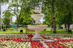 Декоративный фонтан с цветками в парке стоковые фотографии rf