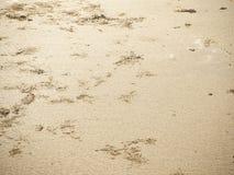 Делает по образцу текстуру песка на пляже стоковое изображение rf