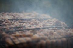 Делать барбекю на гриле Cookout выходных Варящ снаружи, пикник Стоковое фото RF