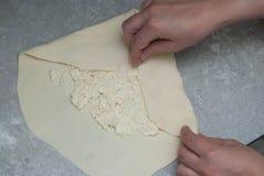 Делать домодельного европейского или русского традиционного пирога сыра или другого вида закуски или помадок печенья на подносе з Стоковые Изображения RF