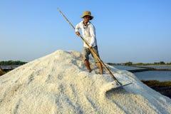 Делать соль в кучах Стоковая Фотография