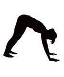 делающ иллюстрацию тренировки нажмите вверх женщину Стоковое Изображение RF