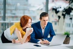 2 делового партнера работая с компьтер-книжкой совместно Стоковая Фотография RF
