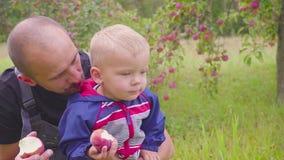 Дело деревни, счастливый отец при мальчик есть плодоовощи на саде во время сбора акции видеоматериалы