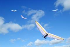 дельтовидные крылья Стоковые Фото