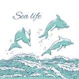Дельфины вектора установленные скача пикирование на океане моря волн Monochrome морские животные эскиза изолированные на белой пр иллюстрация вектора