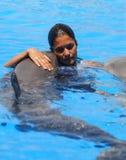 Дельфины и тренер стоковое фото rf