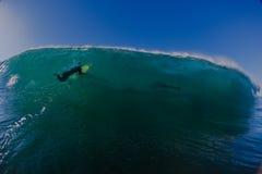 Дельфины серфера погрузят волну в воду Стоковые Изображения RF