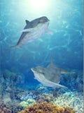 дельфины счастливые иллюстрация штока