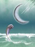 дельфин Стоковое фото RF