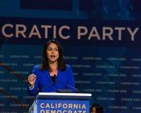 2019 демократичный общенациональный съезд, Сан-Франциско, Калифорния стоковое изображение