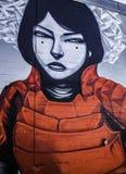 Денвер, граффити Колорадо Стоковое Фото
