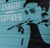 Денвер, граффити Колорадо Стоковая Фотография