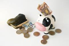 Денежный ящик с банкнотой внутрь вместе с портмонем монетки и s Стоковые Изображения RF