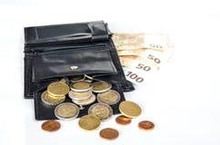 Деньги в бумажнике стоковое изображение rf