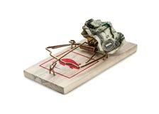 Деньги в мышеловке стоковые изображения rf