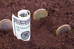 Деньги в почве Стоковые Изображения RF