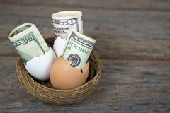 Деньги в раковине яичка в гнезде Стоковое Изображение RF