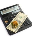 деньги дома чалькулятора Стоковая Фотография RF
