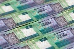 Деньги Египта Предпосылка египетского фунта стоковая фотография
